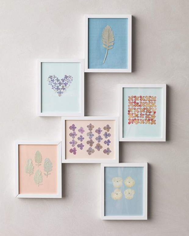 pressed-framed-flowers