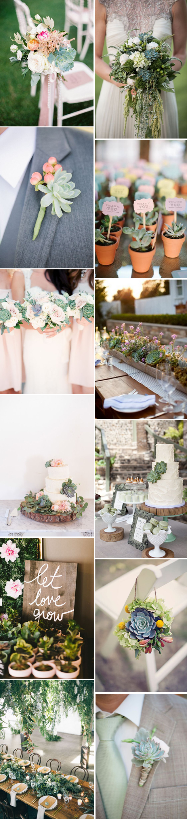 succulents-wedding-decor