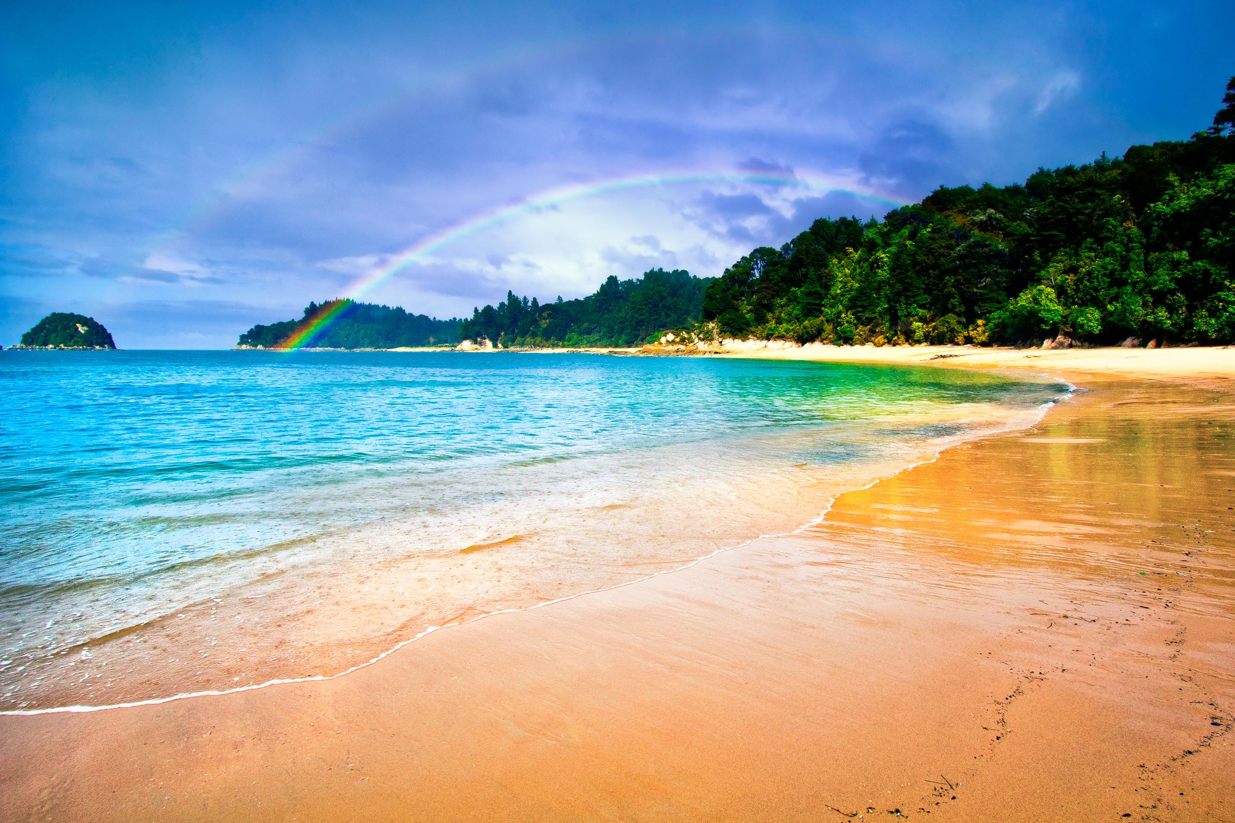 Best Season To Visit New Zealand South Island