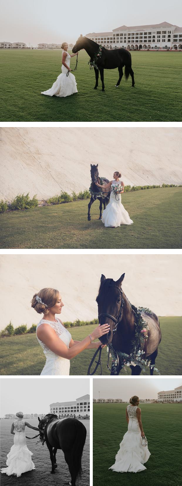 Wedding Horse Dubai Bridal
