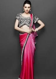 Exquisite Saree