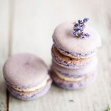 Lilac & Honey Macarons