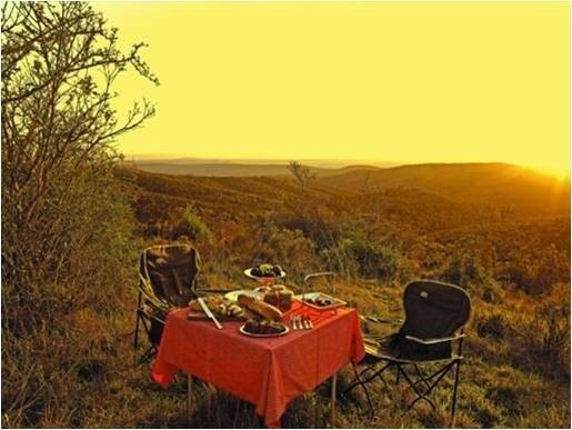 Honeymoons - Weddings in Africa | East Cape Tours and Safaris